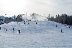 Inverno di Vistola Fotografie Stock