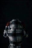Inverno: Donna con il cappotto sulla retrovisione Fotografie Stock Libere da Diritti