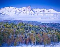 inverno e Autumn Collide em Colorado Fotografia de Stock