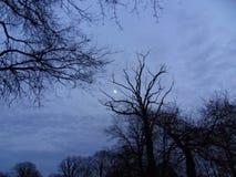 inverno e crepúsculo Fotos de Stock Royalty Free