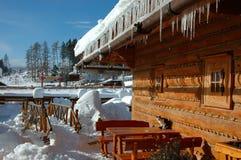 Inverno e geada Foto de Stock