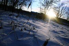 Inverno e neve Fotografia de Stock Royalty Free