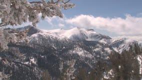 Inverno e neve stock footage