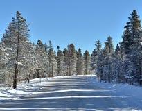 Inverno e strada imballata neve Fotografie Stock Libere da Diritti