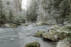 Inverno ed acqua Fotografia Stock Libera da Diritti