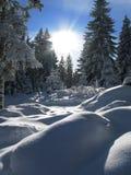 Inverno em Áustria Fotos de Stock
