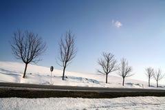 Inverno em Dinamarca Fotografia de Stock