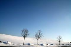 Inverno em Dinamarca Imagens de Stock