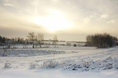 inverno em Hungria fotografia de stock