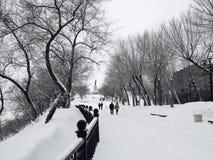 inverno em Khabarovsk Fotos de Stock