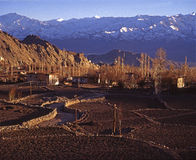 Inverno em Leh, Ladakh Foto de Stock Royalty Free