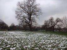 Inverno em Londres Imagem de Stock