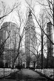 inverno em Madison Square Park - New York City Foto de Stock Royalty Free
