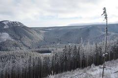 Inverno em montanhas de Tatra Imagem de Stock