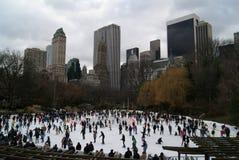 Inverno em New York Imagens de Stock