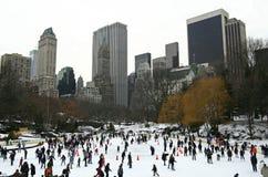 Inverno em New York Fotografia de Stock