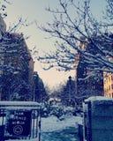 inverno em NYC Fotografia de Stock
