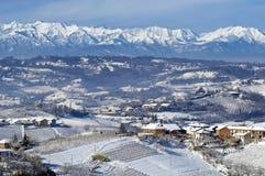 Inverno em Pliemont, Italia, vinhedos nevado fotos de stock royalty free