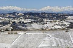 Inverno em Pliemont, Italia, vinhedos nevado foto de stock royalty free