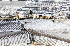 Inverno em Pliemont, Italy, vinhedos nevado imagem de stock royalty free