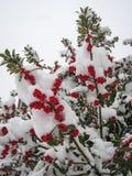 inverno em Puebla de Sanabria, Castilla y Leon, Espanha fotos de stock