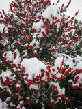 inverno em Puebla de Sanabria, Castilla y Leon, Espanha imagem de stock