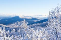 inverno em Ridge Mountains azul imagem de stock royalty free
