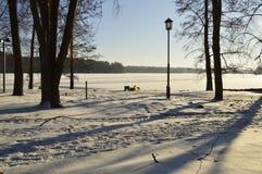 inverno em um parque Imagens de Stock Royalty Free