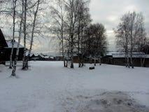 inverno em uma vila Fotos de Stock