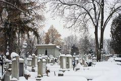 Inverno estremo in Europa Fotografie Stock Libere da Diritti