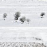 Inverno field Fotografie Stock Libere da Diritti