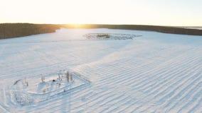 Inverno field metraggio Uomo solo nel campo nell'inverno Mattina pittoresca di inverno Uomo nel campo Immagine Stock Libera da Diritti