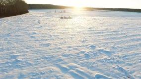 Inverno field metraggio Uomo solo nel campo nell'inverno Mattina pittoresca di inverno Uomo nel campo Fotografia Stock Libera da Diritti
