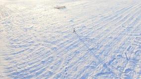 Inverno field metraggio Uomo solo nel campo nell'inverno Mattina pittoresca di inverno Uomo nel campo Immagini Stock Libere da Diritti