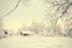 Inverno Forest Landscape Tree con il fondo della neve Fotografie Stock
