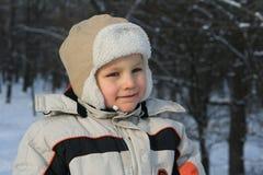 Inverno freddo Fotografia Stock