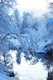 Inverno freddo Immagini Stock Libere da Diritti