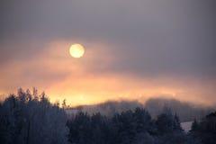 Inverno frio Imagens de Stock Royalty Free