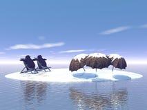 Inverno frio Imagens de Stock
