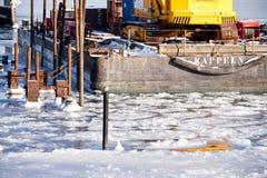 Inverno gelado Foto de Stock Royalty Free