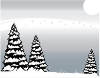 Inverno gelido Fotografia Stock