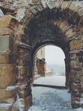 inverno in Georgia Fotografie Stock