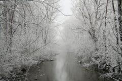 Inverno grigio Fotografia Stock