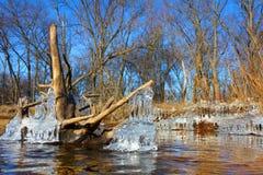 Inverno Illinois del fiume di Kishwaukee Immagini Stock Libere da Diritti