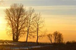 inverno, inverno-maré, inverno-tempo Foto de Stock Royalty Free