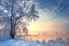 inverno, inverno-maré, inverno-tempo Fotografia de Stock Royalty Free