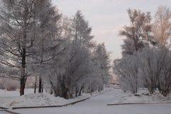 Inverno Irkutsk Immagine Stock
