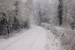 Inverno irlandese Immagini Stock