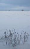 Inverno in Jivova Fotografia Stock