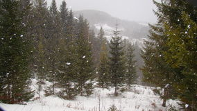 Inverno in Kosmach immagini stock libere da diritti